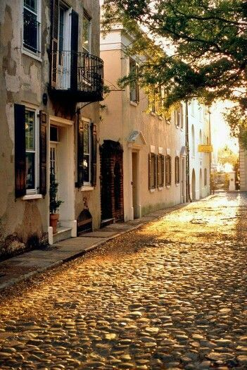 Soaking Up Charleston's Priceless Beauty on the Cheap